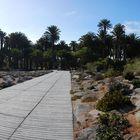 Parque Tony Gallardo