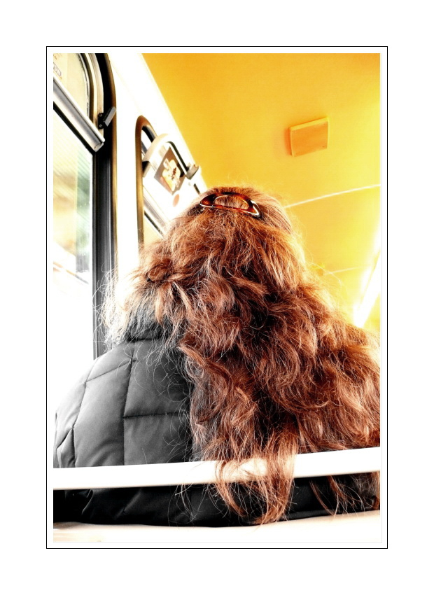 ..part of a <picture> story, a seat in back of the Schwebebahn (I  don't aways look out the window)