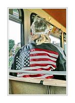 part of a <picture> story, a seat in back of the Schwebebahn (... I just couldn't resist <click>)