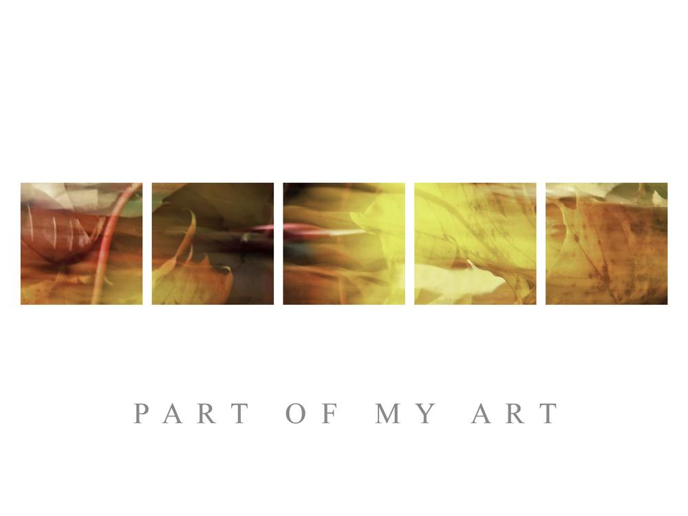 part of my art