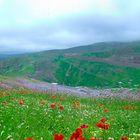 Part of Paradise - Asalem Road (Iran)