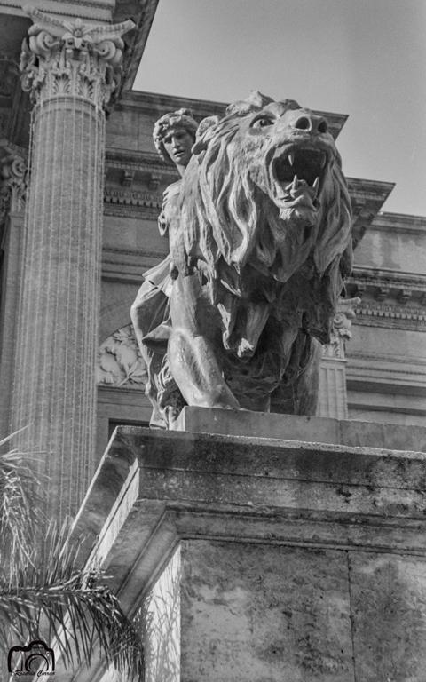 Particolare leoni Teatro Massimo