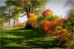 parure d'automne 2