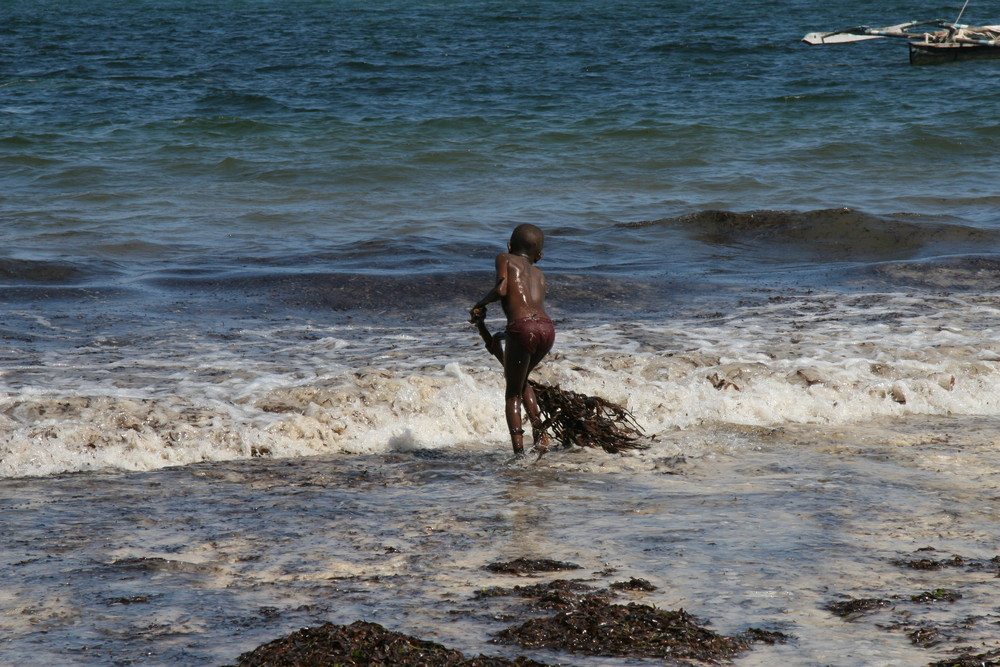 PAS FACILE DE NETTOYER L'OCEAN INDIEN !!!