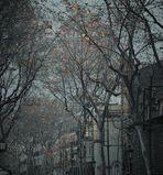 """""""Paseo en otoño"""" Vlll"""