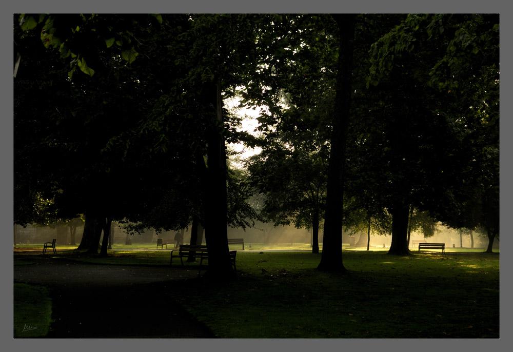 Paseo matutino por el parque