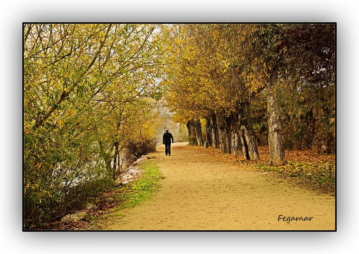 Paseo por el Duero. Zamora