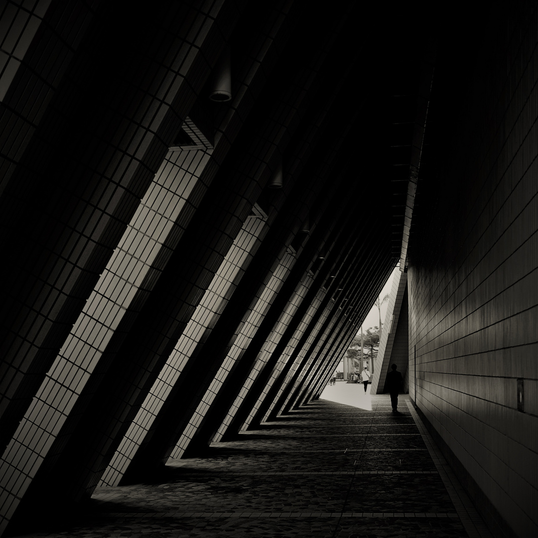 Passage ( rain shelter )