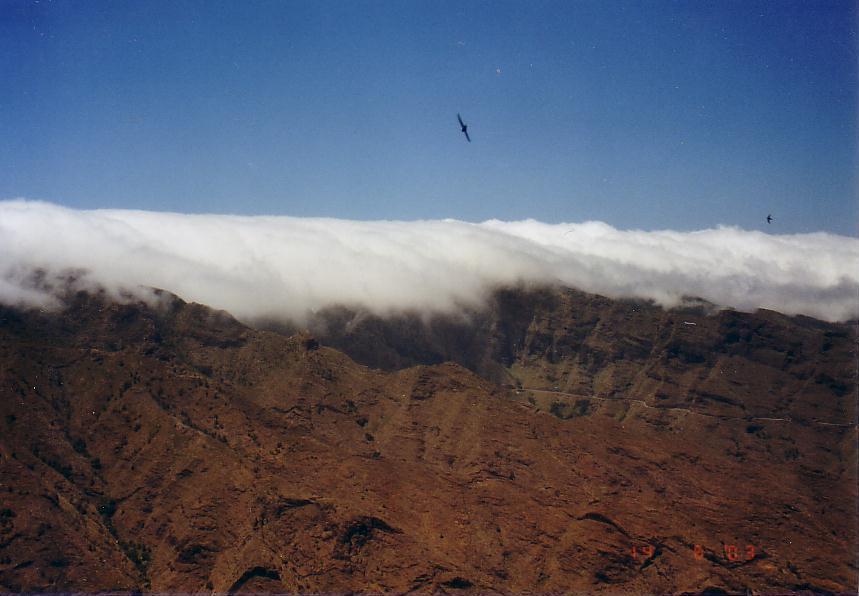 Passatwolken