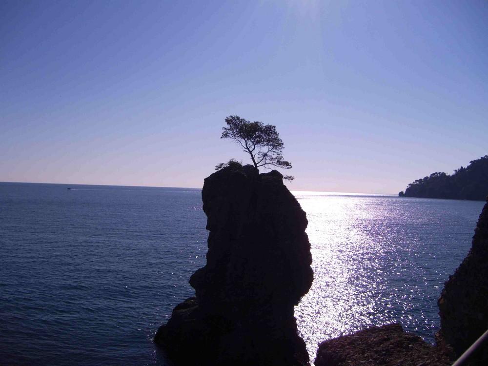 Passeggiando da Santa Margherita a Portofino