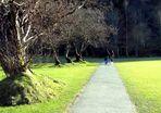...passeggiando sotto l'ultimo sole di una timida primavera