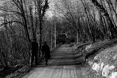 Passeggiata invernale...