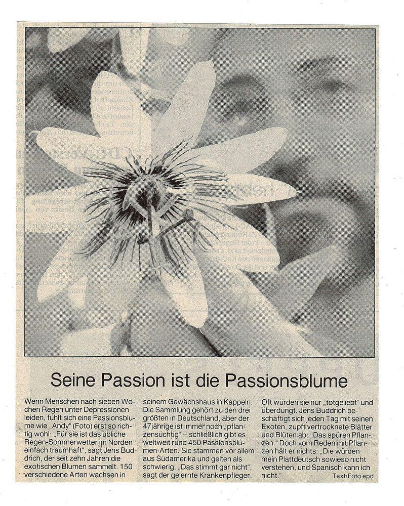 Passion heisst leiden :-)