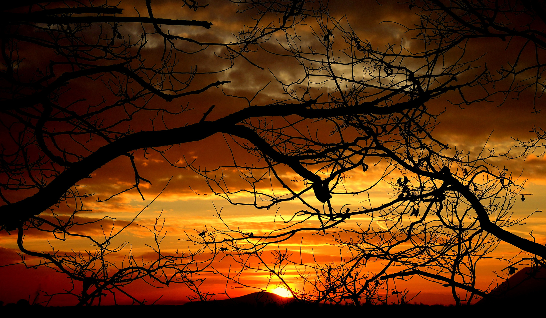 Passioni prima l'orizzonte............