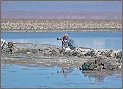 Pastell Foto Tour Salar de Atacama