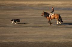 Patagonian way of life
