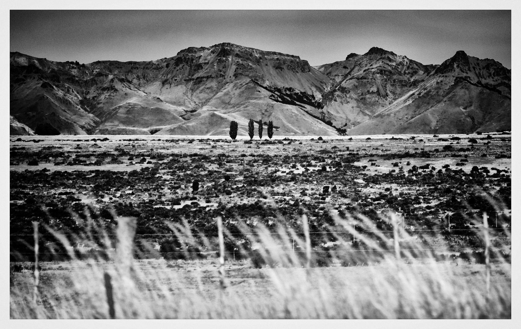 Patagonien .