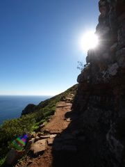 Path to the Lion's Head