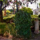 Patio El Jardín