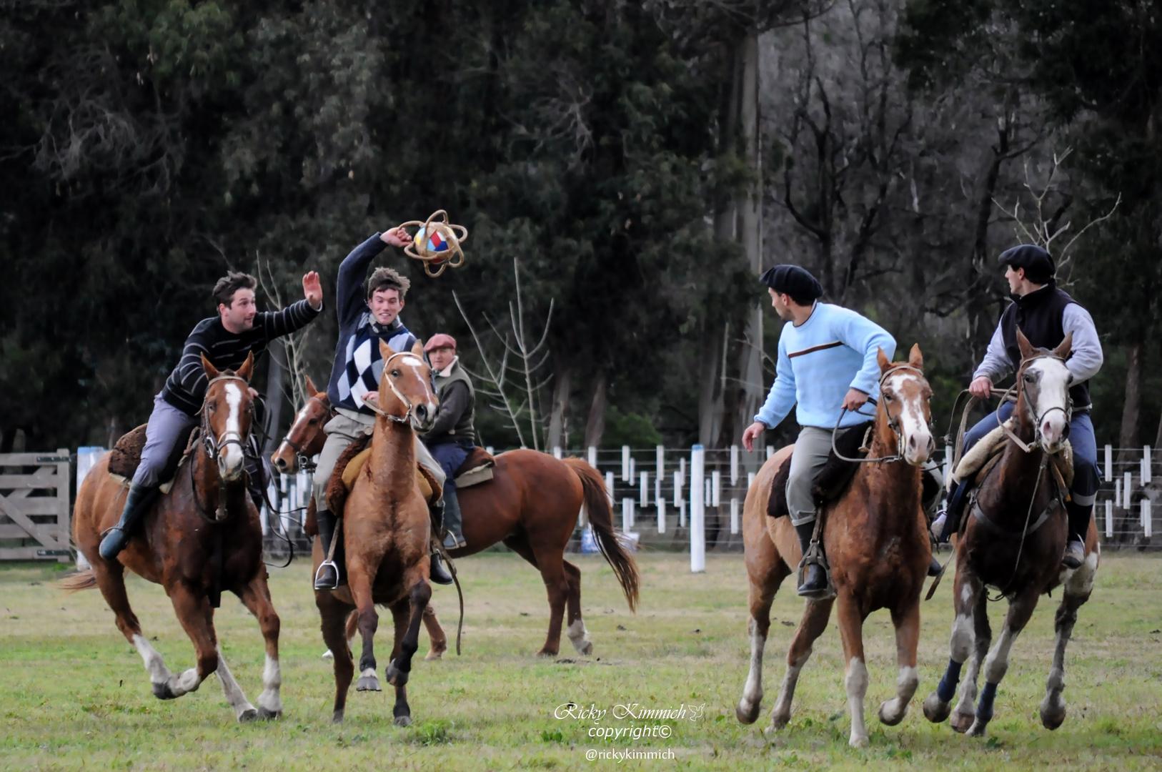 Pato ( deporte argentino )