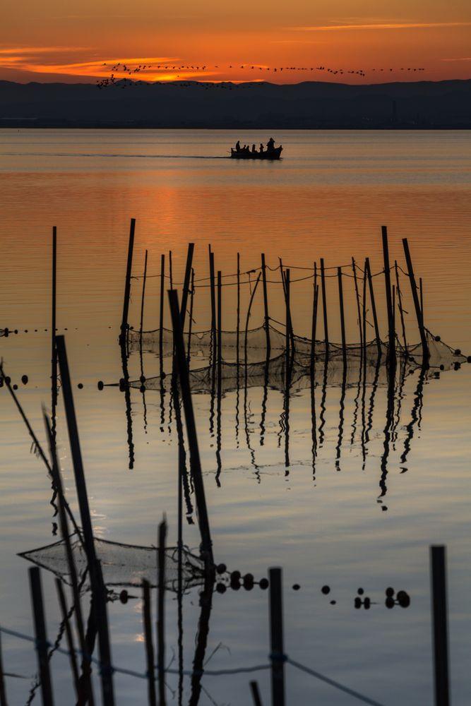 Patos volando, barca y redes
