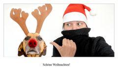Paul und üt wünschen schöne Weihnachten!!!