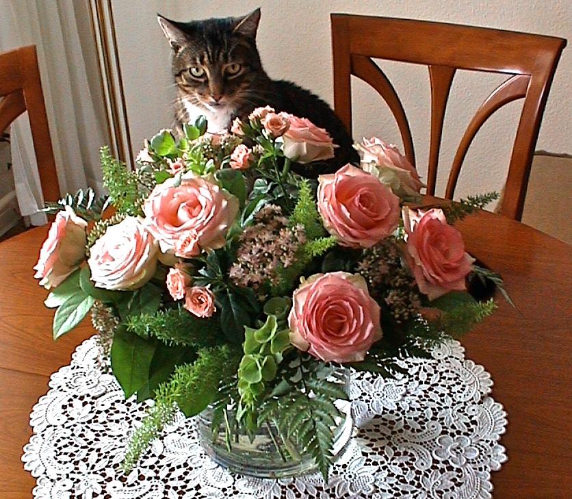 Paule mit Blumenstrauß zum 27. Hochzeitstag