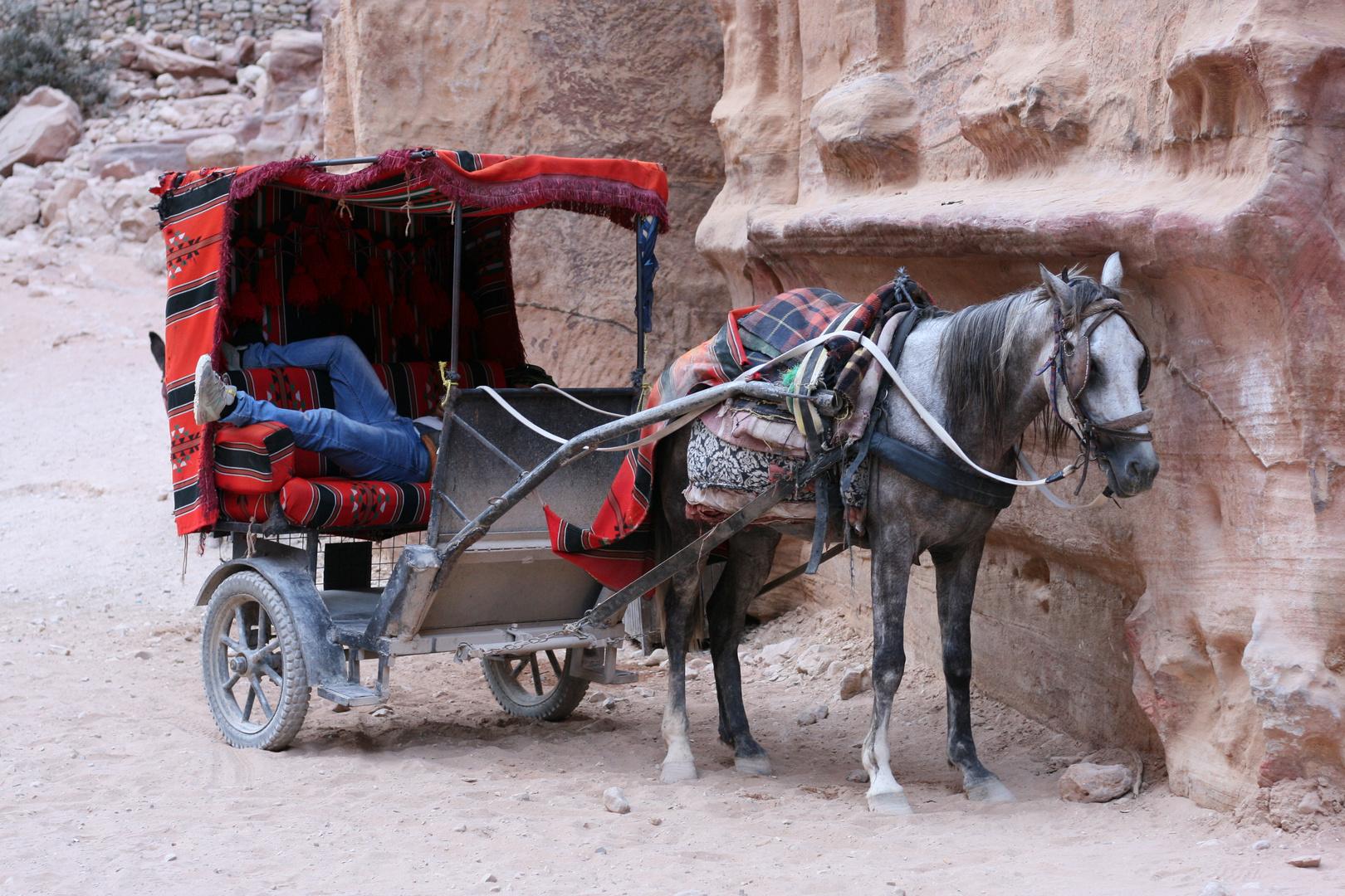 Pause ;-) (Beduine und Pferd in Petra, Jordanien)