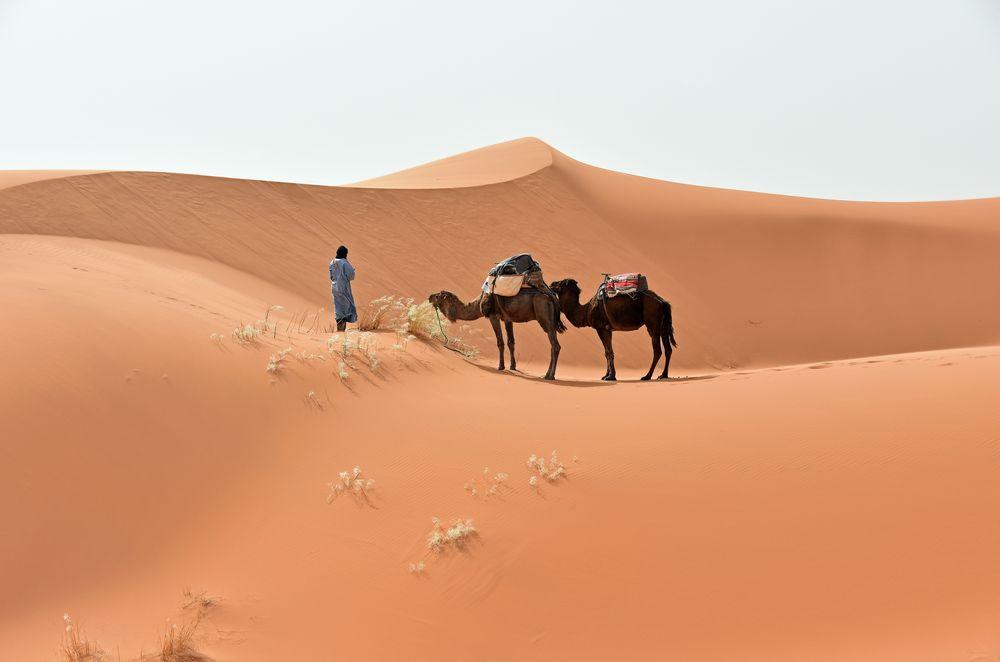 Pause im Erg Chebbi im Süden von Marokko