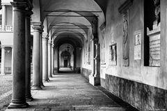 Pavia, l'Ateneo