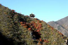 Pavillion im Herbstwald
