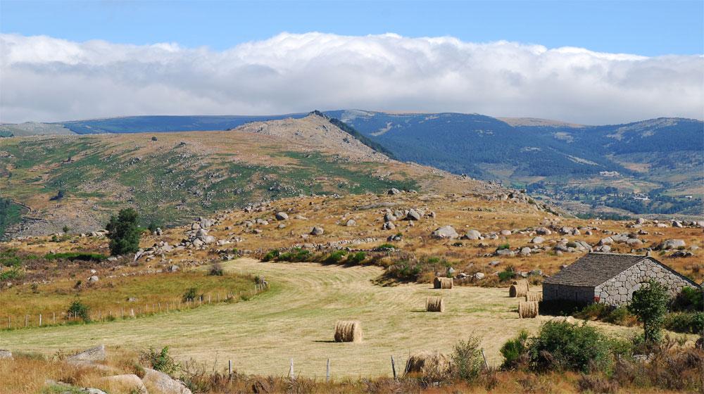 paysage-de-la-lozere - Photo