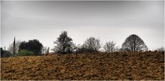 Paysage d'hiver dans le Gers