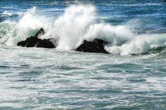 Pazifik                                        DSC_4463-2