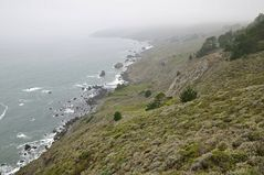 Pazifikküste im Nebel
