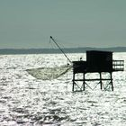 Pêcheur de vagues