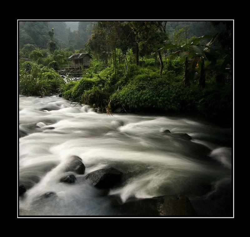 Peaceful Stream