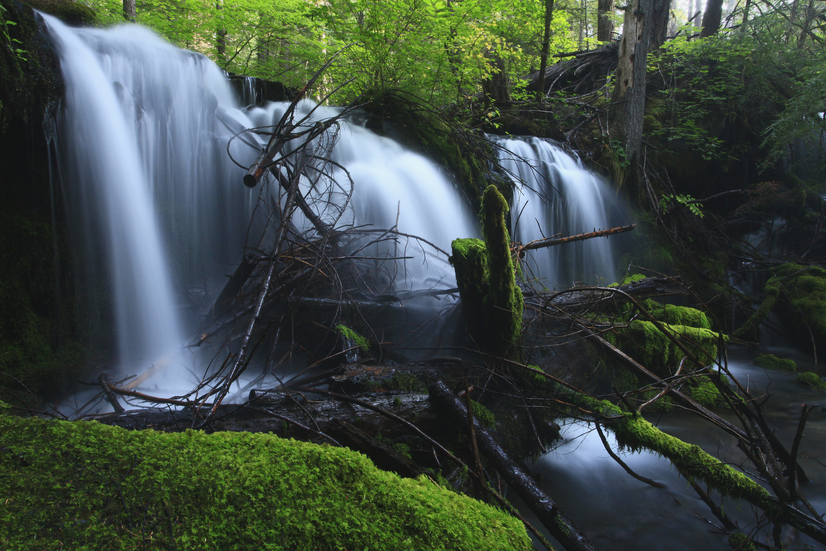 Pearsonney Falls, OR