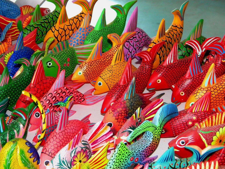 peces de colores