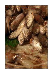 peix fresc #1