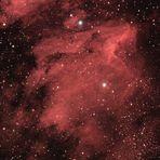 Pelikannebel im Sternbild Schwan vom 22.+29.05.2009
