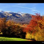 ...pennellate d'autunno!..