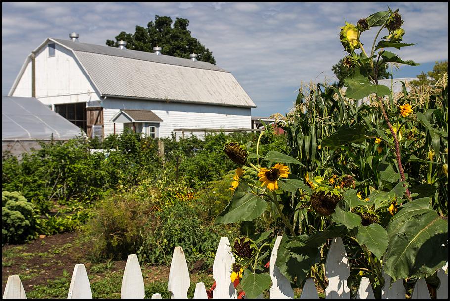 Pennsylvania | Amish Country |