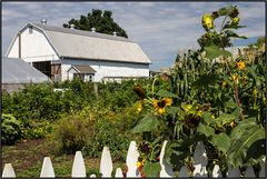 Pennsylvania | Amish Country |