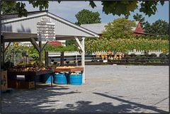 Pennsylvania   Amish farm stand  