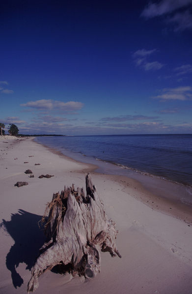 Pensacola Beaches