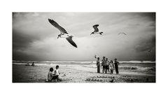 People & Birds ...