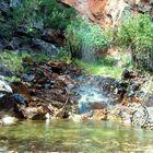 Pequeña Cascada Primaveral