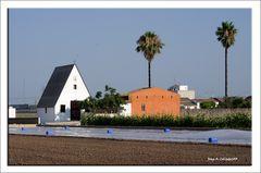 Per l'Horta d'Alboraia
