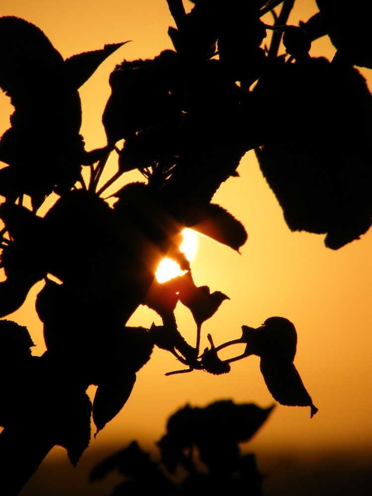 percée du soleil